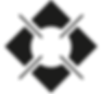 LarissaPhotography-logo.png