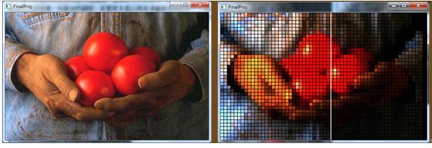 Mosaic Simulation