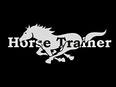 Play Horse Trainer online!