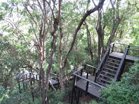 Wilderness Metanoia hiking trails