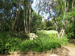 Wilderness Metanoia gardens