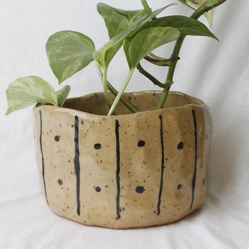 Polkastripe Planter