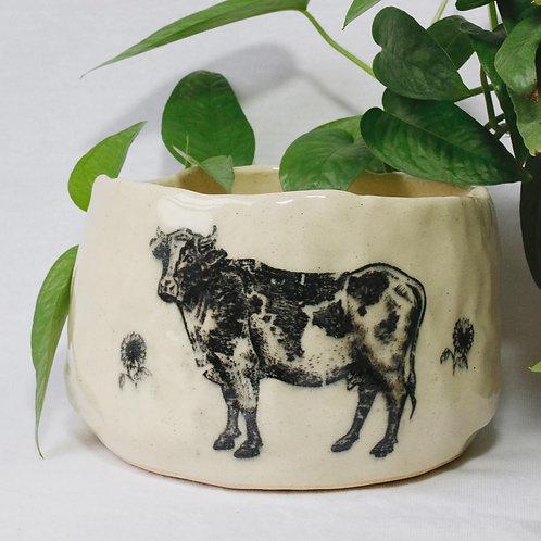Creamy Cow Planter