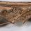 Thumbnail: Indisches Ochsengespann als Couchtisch
