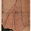 Thumbnail: Kitagawa Utamaro - Ukiyo hakkei