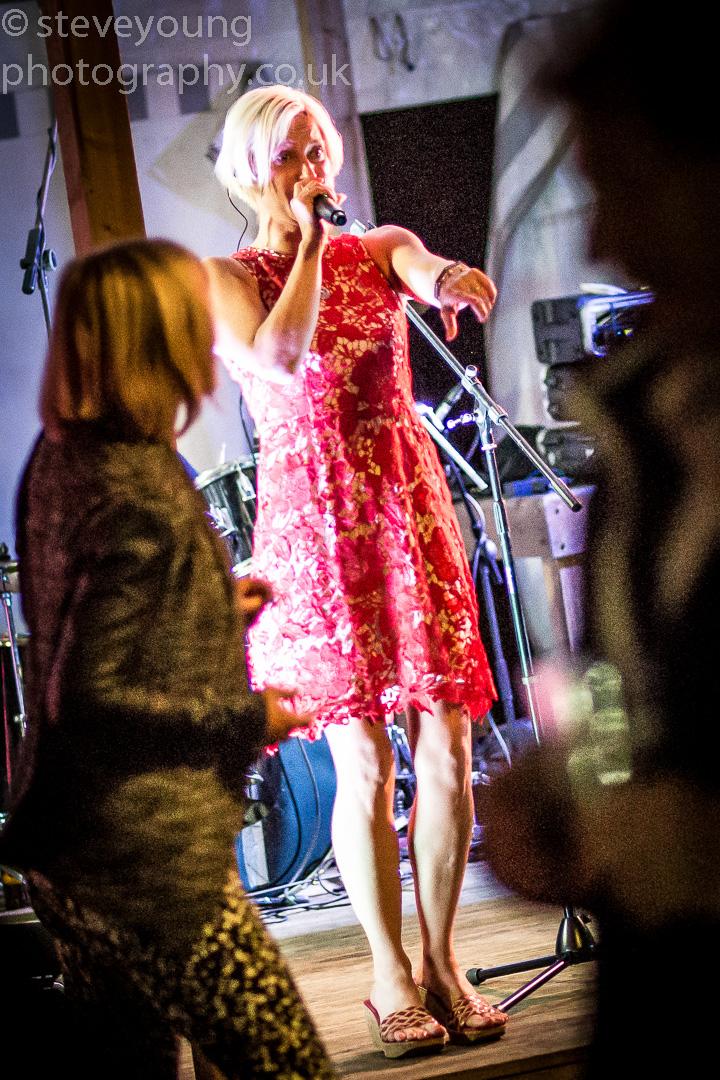 henley festival 2015-8.jpg