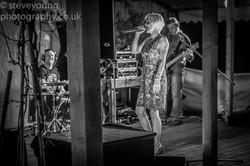 henley festival 2015-9.jpg