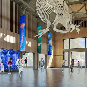 Aquarium Awarded A Matching Grant For Capital Campaign