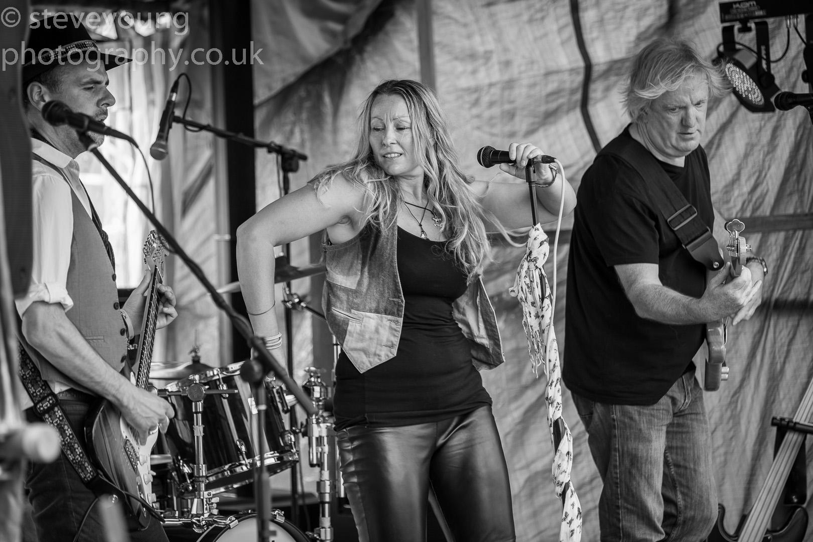 henley festival 2015-18.jpg