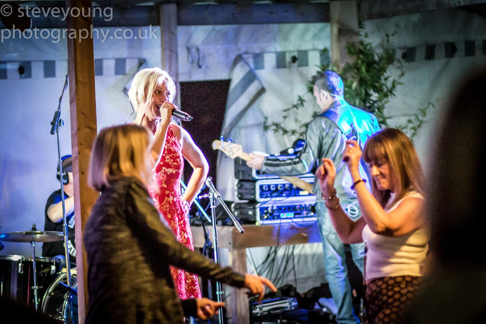 henley festival 2015-7.jpg