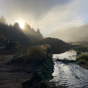 Salmon Habitat Restoration Project Completion