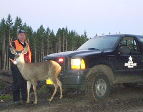Four Cited For Wildlife Violations