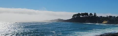 Coastal header.PNG
