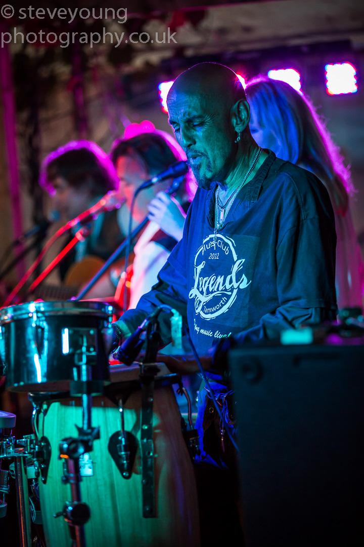 henley festival 2015-154.jpg