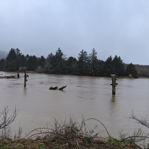 Flood Advisories For The Alsea and Siletz