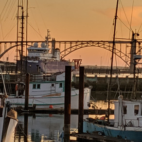 Disaster Relief Urged For Salmon Industry