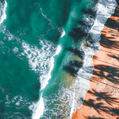 Emerald-Ocean-Waves-Beach-Palm-Shaddow.p