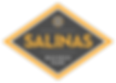 salinas_business_park_logo_final.png