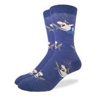 Good Luck Sock Sharks