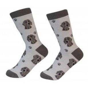 Sock Daddy Weimeraner