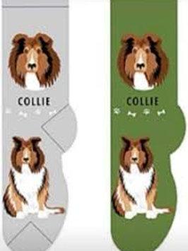 Foozys Collie