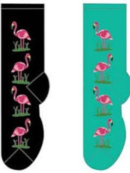 Foozys Flamingos