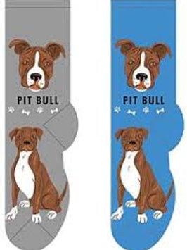 Foozys Pit Bull