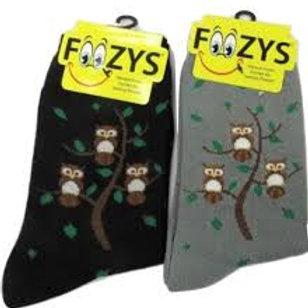 Foozys Owl Family Tree