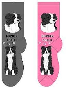 Foozys Border Collie