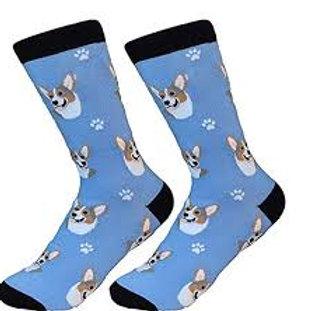 Sock Daddy Corgi