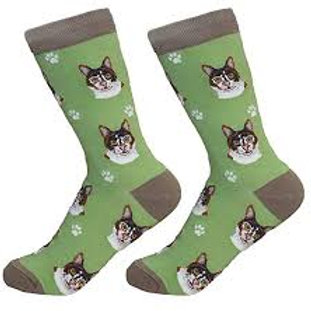 Sock Daddy Calico Cat