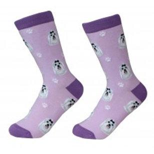 Sock Daddy Maltese