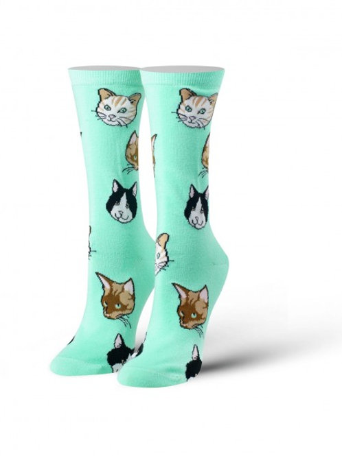 Cool Socks Cats on mint