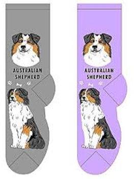Foozys Australian Shepherd