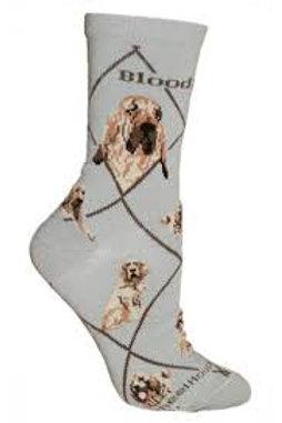 Wheelhouse Bloodhound