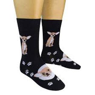 Funatics Chihuahua Dog
