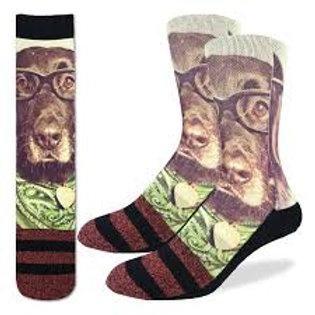 Good Luck Socks Hipster Dog