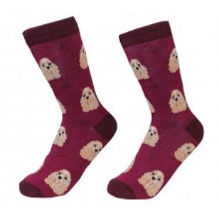 Sock Daddy Cocker Spaniel
