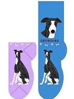 Foozys Greyhound