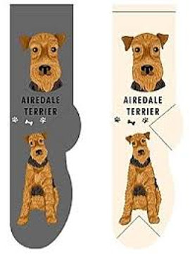 Foozys Airedale Terrier