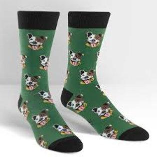 Sock It To Me Go Fetch!  Ptbull Dogs