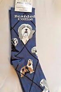 Wheelhouse Bearded Collie