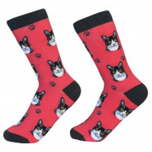 Sock Daddy Black and White Cat