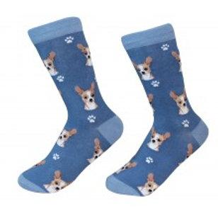 Sock Daddy Tan Chihuahua