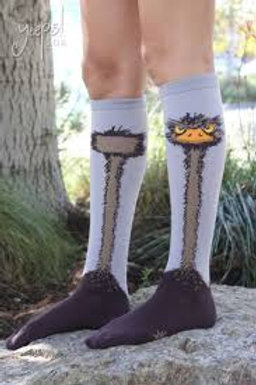 Sock It To Me Ostrich