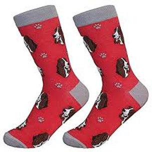 Sock Daddy Basset Hound