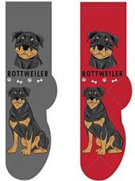 Foozys Rottweiler