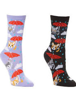 Foozys Raining Cats and Dogs