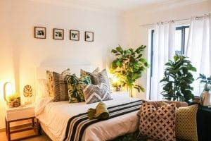 Best Bedroom Plants for a Prettier, Healthier Space 🍀