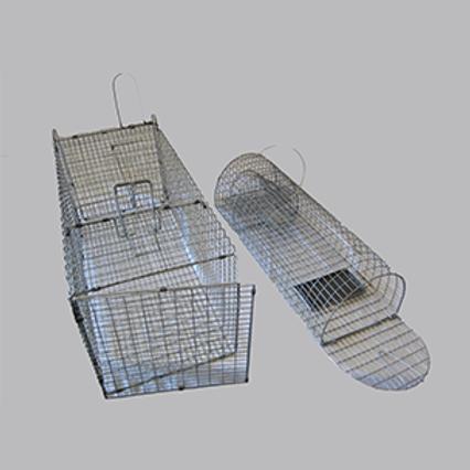 Cat Cage ( Rental)